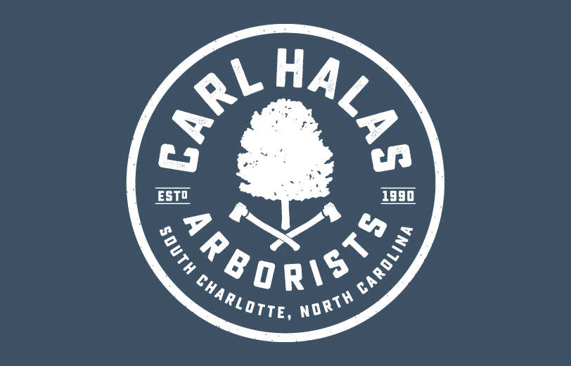 arborist logo design charlotte north carolina